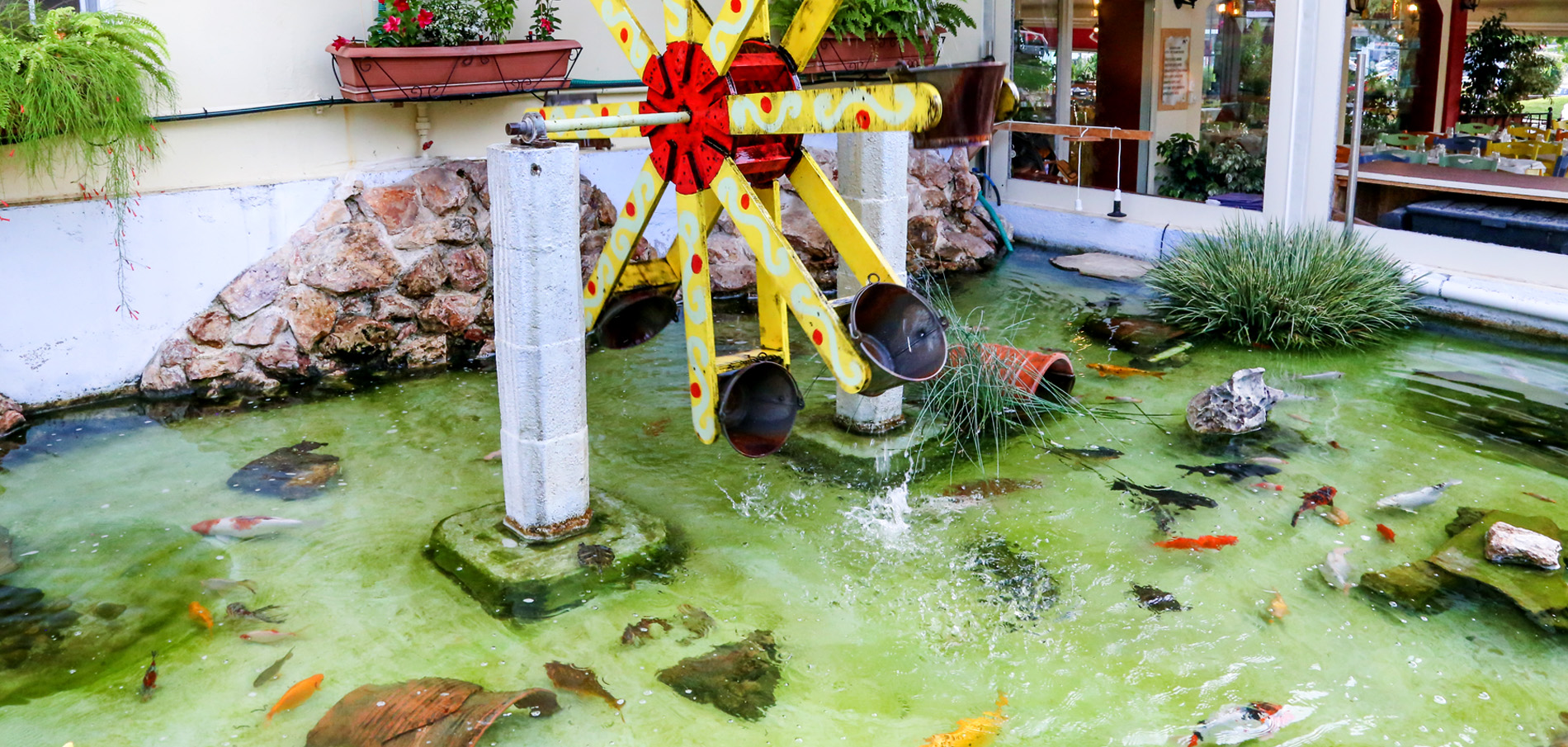 Κεμπαπτζίδικον Ο Νερόμυλος - ο νερόμυλος στη λίμνη με τα ψάρια